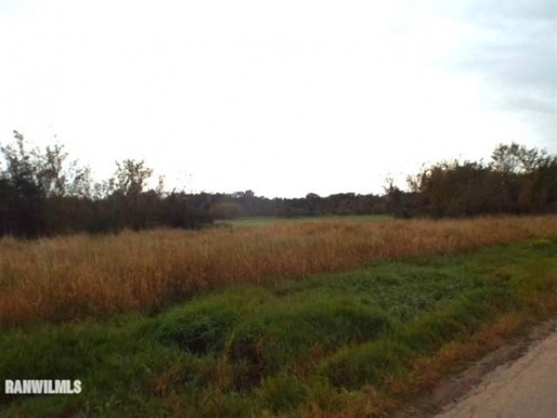 Hanover, Illinois, ,Hunting,For Sale,20210104